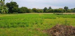 Продам земельный участок под постройку